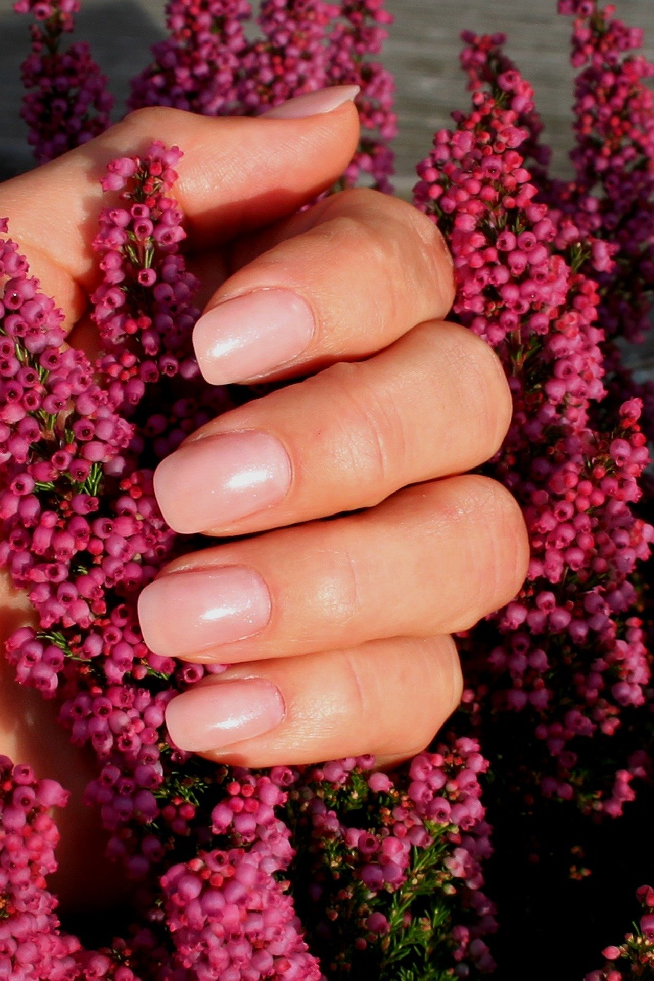 Close up of a woman folding a flower with manicured nails. For use on the Manicure Course page.